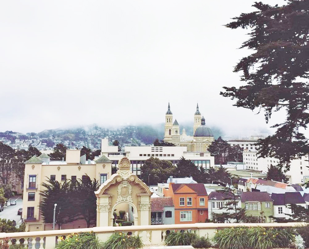 12 reasons to love USF, School of Nursing and Health Professions, University of San Francisco